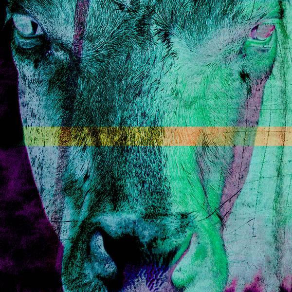 Bilde av Cow 20 x 20 cm Nr 31        -